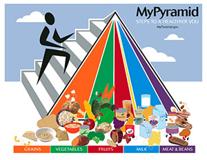 2005 USDA food pyramid - MyPyramid