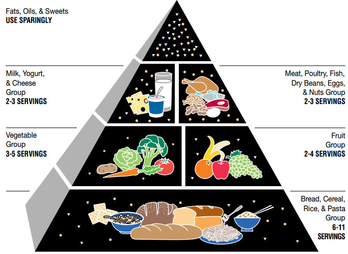 1991 USDA food pyramid