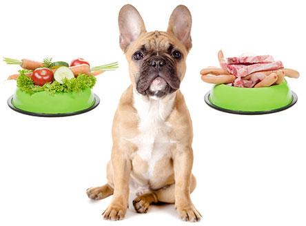Raw food diet for pets